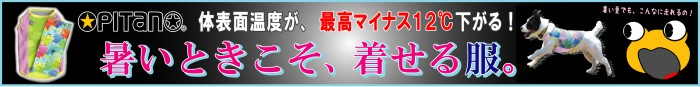 inunokimochi_web1b